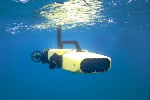 Big barrier: a robot to hunt the killer sea stars