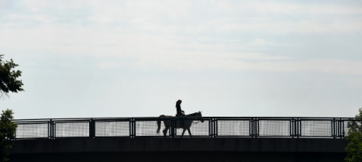 Alcool et violences sexuelles: l'équipe d'Allemagne d'équitation dans la tourmente