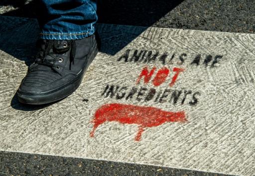 Végan: chasseurs et bouchers demandent la