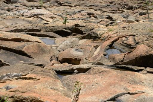 Météo: 70% de probabilité d'un phénomène El Niño à la fin de l'année