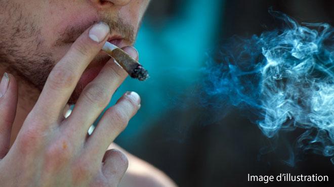 Il cachait de la cocaïne et du cannabis dans ses sous-vêtements: un réseau de trafiquants de drogue démantelé à Tournai