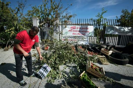 Travail saisonnier: manifestations d'agriculteurs dans le sud de la France