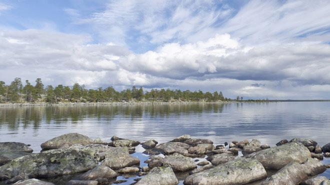 Les quatre Belges recherchés en Suède retrouvés vivants