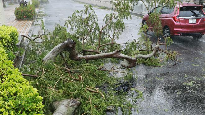 Un puissant typhon, avec des vents mesurés à 216 km/h, fait plusieurs blessés au Japon
