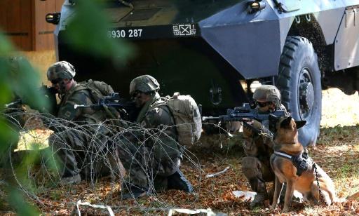 Une armée qui a du chien