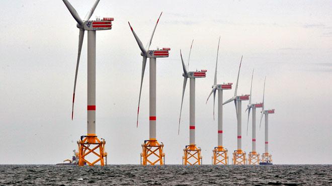 Les éoliennes en mer du Nord ont des conséquences sur l'écosystème marin: voici les conclusions de scientifiques