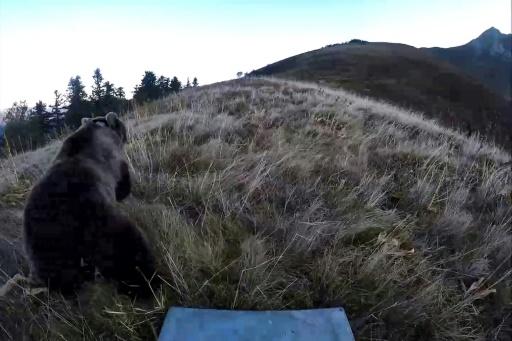 Chef de file des éleveurs anti-ours: