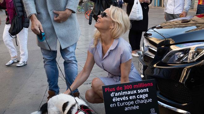 Pamela Anderson, enfermée pour dénoncer une souffrance terrible