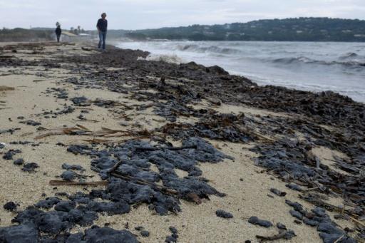 Boulettes de pétrole sur des plages de Saint-Tropez: opération nettoyage jeudi