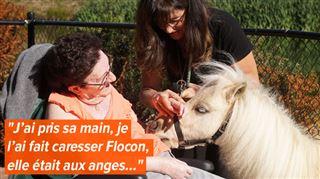 Manuela emmène Flocon, son poney de 3 ans, dans une maison de retraite- Une façon d'amener un peu de joie et de réconfort (vidéo) 3