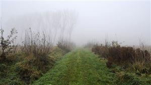 Prévisions météo: nuages, brume et brouillard font leur grand retour avant un week-end agréable