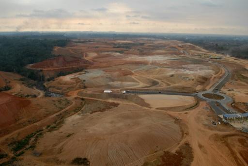 Au Gabon, la vente de bois précieux illégalement coupé inquiète