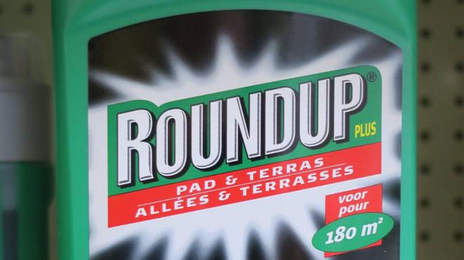 La Commission européenne interdit à Bruxelles d'interdire le glyphosate: voici son argument