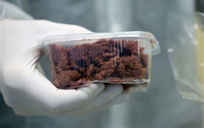 Les Etats-unis ouvrent la voie à l'autorisation de la viande de laboratoire