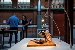 Asticots et vin de souriceaux- en Suède, un Musée de la nourriture dégoûtante