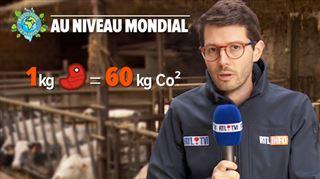 Un geste pour la planète- voici les avantages de limiter sa consommation de viande