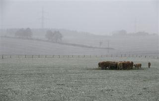 Cop24- Réduire le gaspillage et consommer moins de viande pour nourrir la terre en 2050 selon une étude