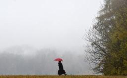 Météo - Des nuages et de la pluie ce samedi