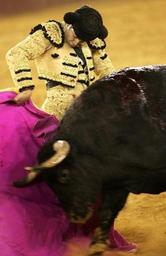 L'interdiction des corridas avec mise à mort aux Baléares jugée inconstitutionnelle