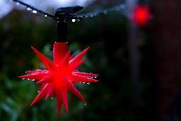 Météo - Pas de Noël blanc cette année