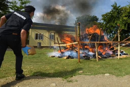 Indonésie: la police brûle une montagne de marijuana
