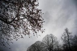 Un ciel couvert et des averses hivernales en Ardenne