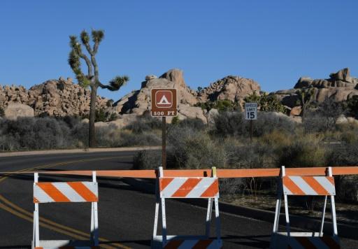 USA: le parc national de Joshua Tree reste finalement ouvert malgré le