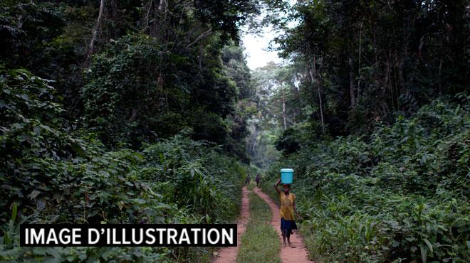 Cameroun: une trentaine de voyageurs enlevés en zone anglophone