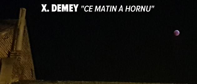XDemey