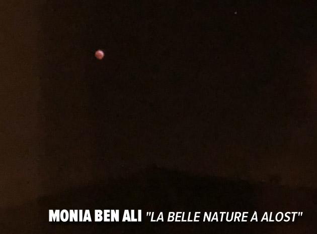 MoniaBenAli