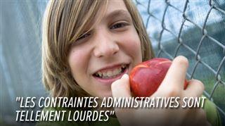 Les écoles de plus en plus nombreuses à ABANDONNER le programme fruits et légumes- la raison est purement administrative... 4