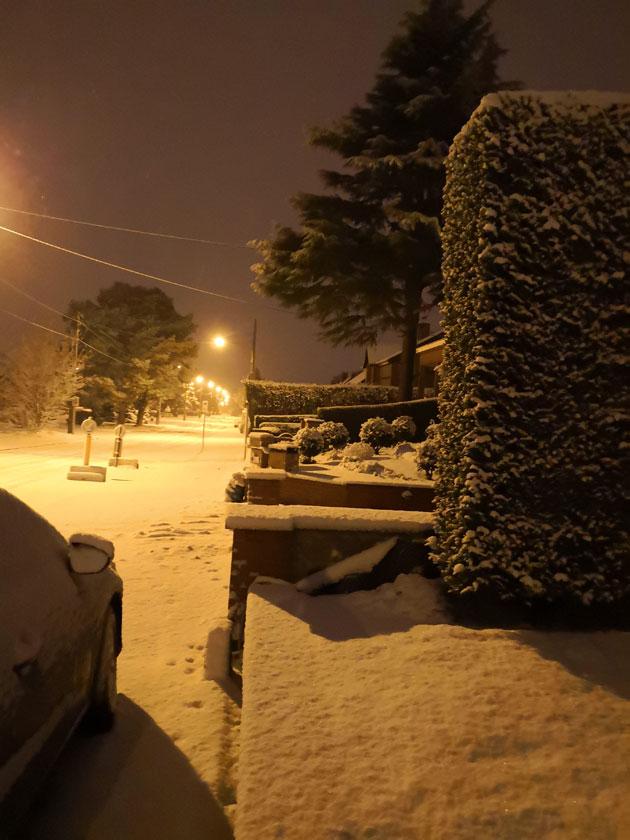 SNOWflenu-MONS