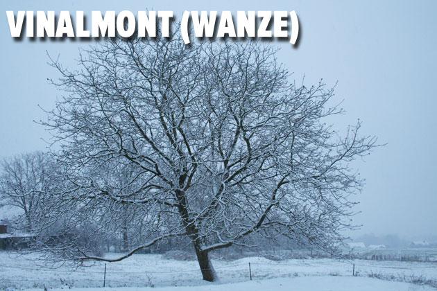 vinalmont