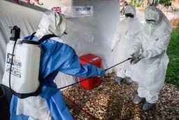 Plus de 700 personnes infectées par Ebola en RDC en six mois