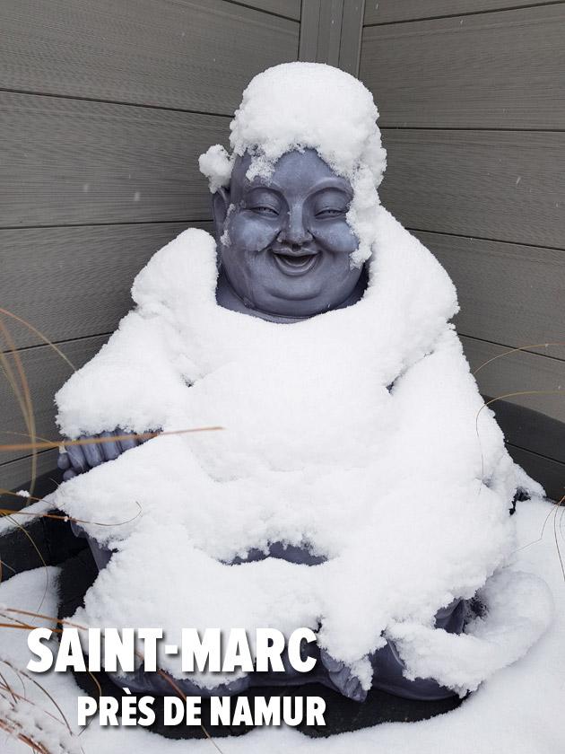 saintmarc