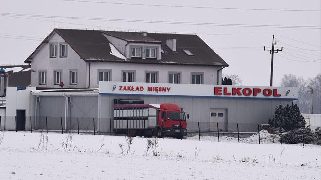 De la viande polonaise impropre à la consommation découverte dans 13 pays de l'UE: que s'est-il passé?
