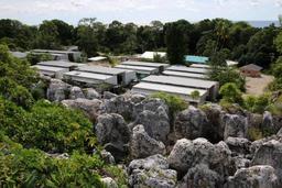 Asile et migration - L'Australie va évacuer les derniers enfants migrants de son centre de détention à Nauru