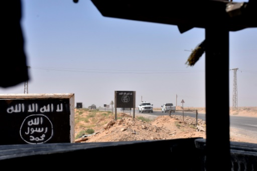 Paris face au casse-tête du retour des Français de Syrie