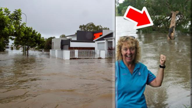 Inondations en Australie: des CROCODILES aperçus dans des rues devenues des torrents (photos)