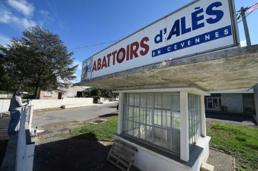 Trois amendes requises contre le directeur de l'abattoir d'Alès, épinglé par L214