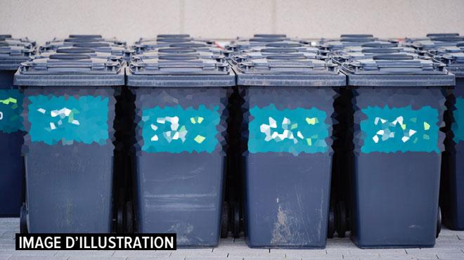 Des poubelles rigides seront bientôt obligatoires dans certains quartiers de Bruxelles