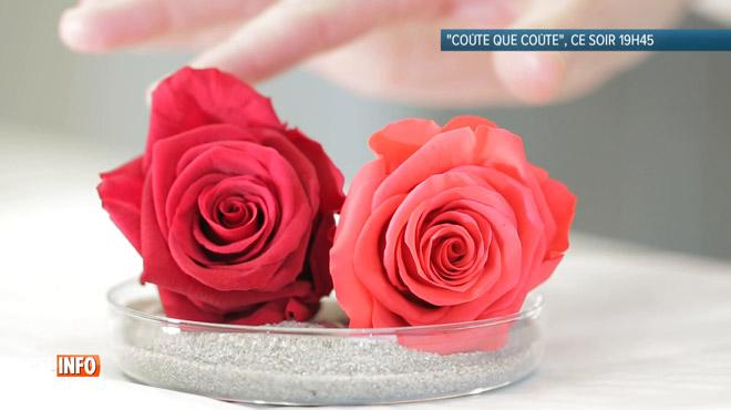 Quoi de plus romantique que d'offrir des roses