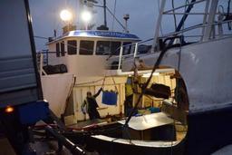 Accord à l'Europe pour n'interdire totalement la pêche électrique qu'en 2021