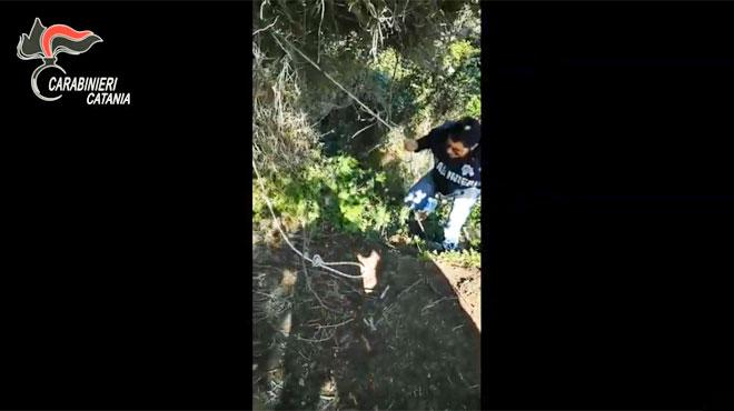 Les carabiniers italiens mettent fin à la cavale du fugitif surnommé