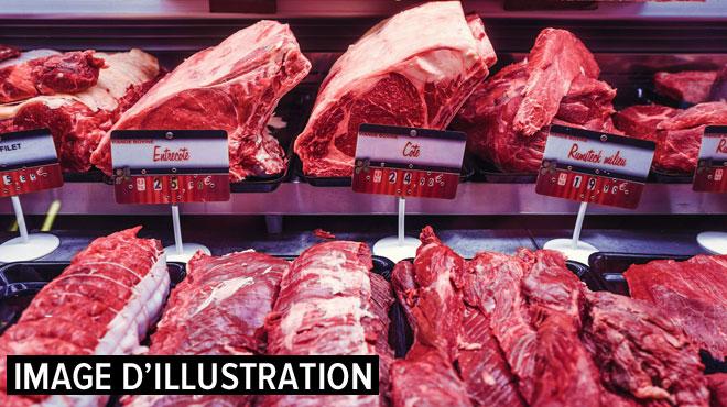 Scandale de la viande de cheval en 2013: un directeur d'abattoir condamné aux Pays-Bas