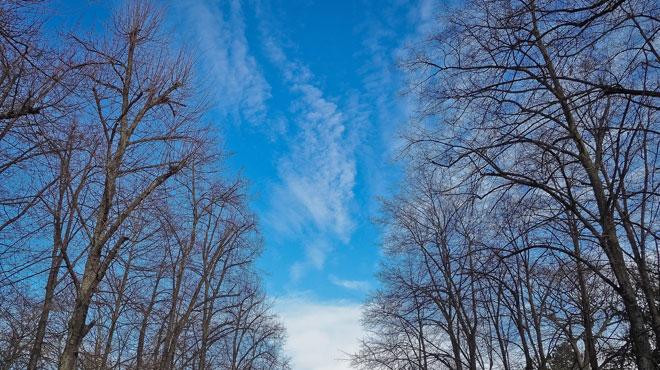 Prévisions météo: est-ce bien l'hiver?