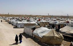 Au moins quatre combattants belges de Daech se trouvent dans des prisons kurdes