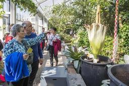 Le Jardin botanique de Meise va digitaliser 1,5 million de spécimen d'herbier