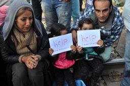 Asile et migration - Grèce: le Conseil de l'Europe dénonce les conditions de rétention des migrants