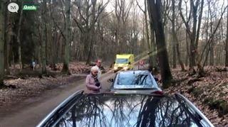 Attaqué par un sanglier en pleine forêt, un cycliste a été violemment catapulté- La bête était vraiment grande 5